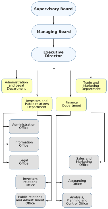 Synergon Holding managing structure